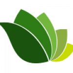 willis_logo header
